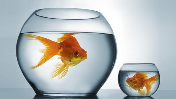 big-london-agency-vs-small-london-agency