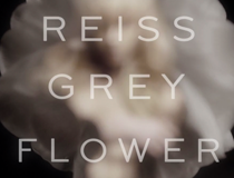 video-production-reiss