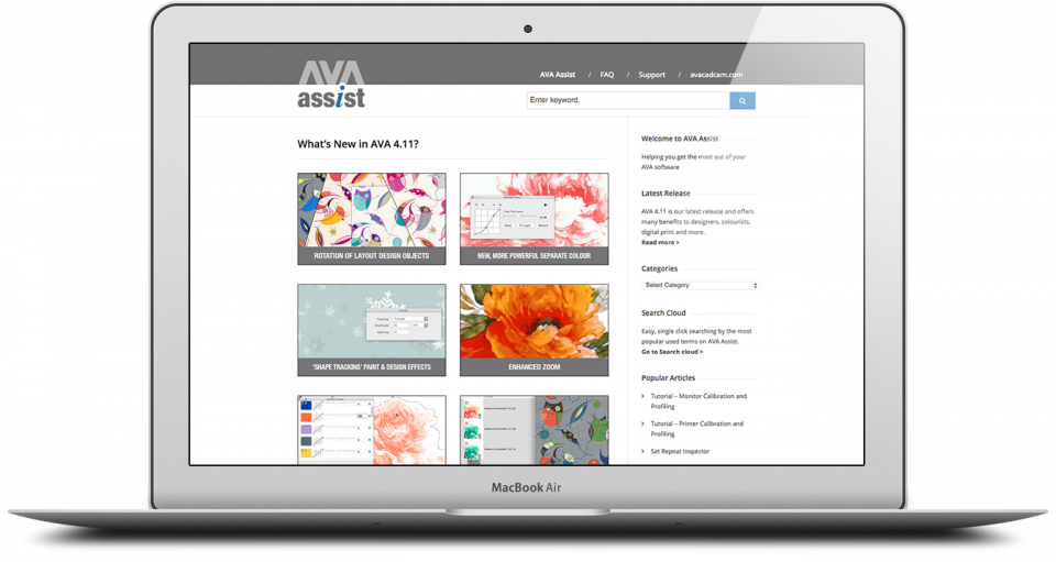 AVA FAQ Website Design London 1